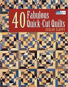 40 FABULOUS QUICK-CUT QUILTS: Evelyn Sloppy: 9781564775474: Books - Amazon.ca