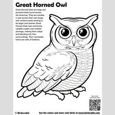 Great Horned Owl Coloring Page Coloring Pages
