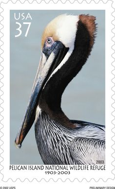 postal stamp - Google Search