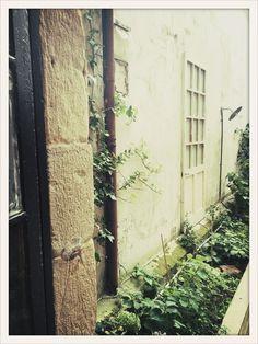 Nuestro maravilloso patio al fondo del nuevo espacio auka, hortensias...muy del Norte ;)