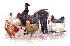 Chickens! (Artist is AMAZING)