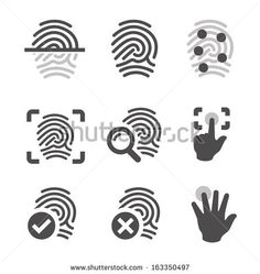 Simple set of fingerprint related vector icons for your design. by davooda, via ShutterStock