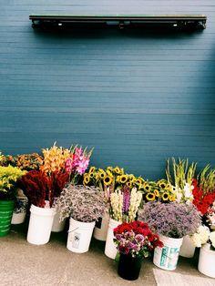 San Francisco flower market.