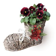 Gift Boot Planter with Red Pansies New for 2016! All orders must be received by Sunday 18th December 2016 for Christmas Delivery.New for 2016, this Rattan and Metal Boot Planter is perfect for adding the Wow factor and making a stateme http://www.MightGet.com/january-2017-11/gift-boot-planter-with-red-pansies.asp