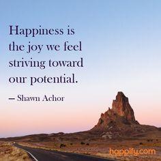 Do You Feel the Joy of Pursuit?- Shawn Achor