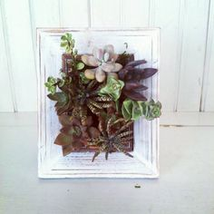 Set Refresh: 7 On-trend Planters to Brighten Up Your Home   Photo Gallery - Yahoo! Shine