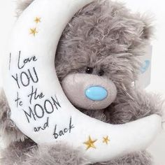 ●•‿✿⁀Taɬɬy Teddy‿✿⁀•● I Lve YOU to the MOON and back