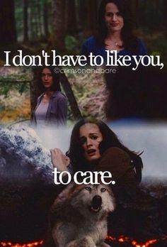 Twilight Saga ~ Leah and Esme Twilight Saga Quotes, Twilight Saga Series, Twilight Cast, Twilight Movie, Twilight Videos, Twilight Wolf Pack, Twilight Breaking Dawn, Twilight Pictures, New Moon