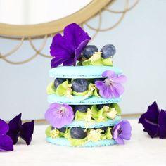 macaron cake {{ @nut