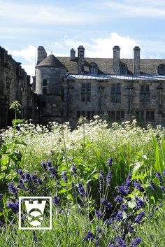 Falkland Palace in Fife - a favourite place of Mary, Queen of Scots. Surrounded by extensive gardens, this partly restored Renaissance palace is the perfect place to while away an afternoon. The beautiful, tranquil grounds are worth a visit alone. They are home to the oldest Royal tennis court in Britain, built for King James the V. The grounds also include ruins of the 12th century Castle of Falkland, extensive gardens and an ancient Orchard with a wild flower meadow.