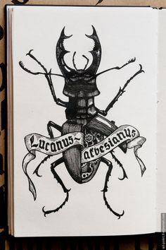 Sketchbook — Lucanus