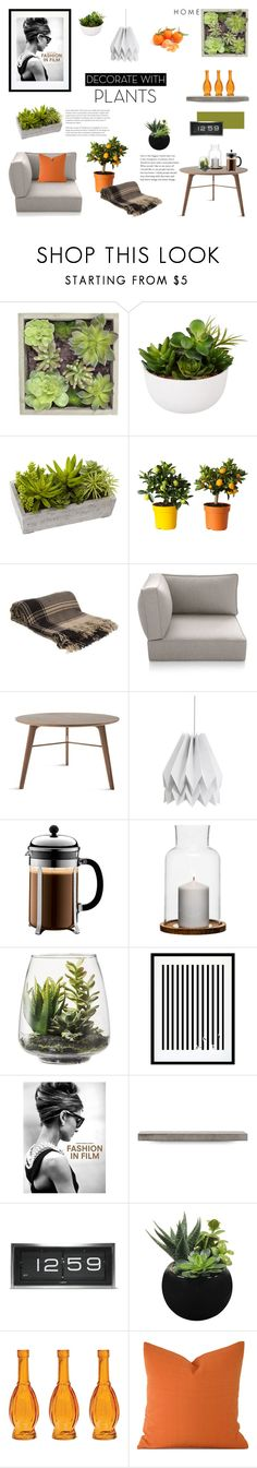 """""""Stylish & Fresh"""" by lysianna on Polyvore featuring interior, interiors, interior design, Zuhause, home decor, interior decorating, Gold Eagle, John Lewis, Nearly Natural und Denis Colomb"""