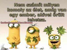 Geek Humor, Minions, Minion Humor, Picture Quotes, Bff, Geek Stuff, Inspirational Quotes, Funny, Pictures