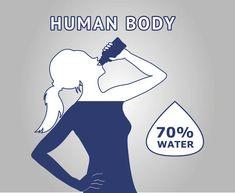 Human Body, Diet, Banting, Diets, Per Diem, Food