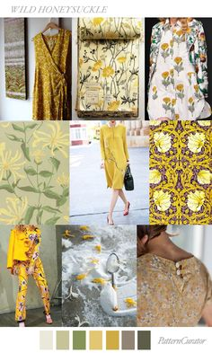 Wild Honeysuckle | PatternCurator | Style Color Palettes | Colour | Fashion Color Palettes | Mood Boards | Color Inspiration | Personal Style Online | Online Fashion Stylist | Fashion For Working Moms & Mompreneurs