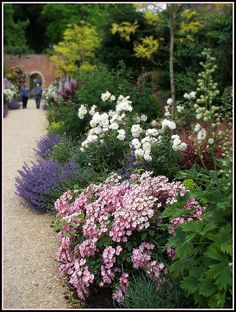 Pink, Blue, white Cottage Garden by crafteelady, via Flickr