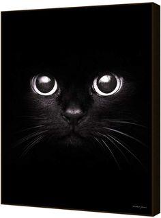 Curioos The Black Cat by Mikhail Zhirnov (Artblock)