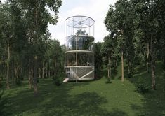 House Around a Tree by A.Masow Architects: Most beautiful houses in the world