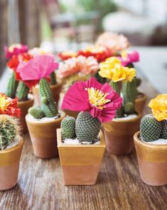 Hand-crafted crepe paper flowers and gold-edged terracotta pots filled with succulents provided the bulk of the fiesta's décor at Kate Bosworth's wedding welcome party.