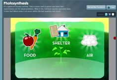 Interactive site for Photosynthesis