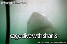 Before I die, I will...Cage Dive with Sharks