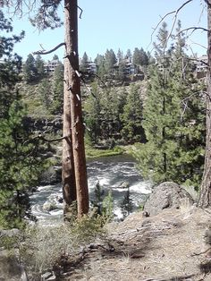 Trail overlooking Deschutes River