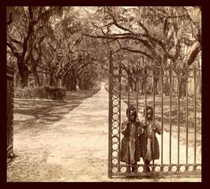 "SLAVES, EX-SLAVES, and CHILDREN OF SLAVES IN THE AMERICAN SOUTH, 1860 -1905 (22) ""I doubt the photographer intended it, but his image of two children still 'behind bars' at the opened gate is filled with allegory about the true situation of the freed slaves."" Photographed at the old Goose Creek Plantation in Charleston, South Carolina."