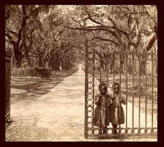 Goose Creek Plantation in Charleston, South Carolina