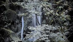 """this is """"two waterfalls"""" located in the japenese gardens in portland oregon i live in portland so i have got to see this"""