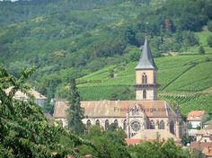 Ribeauvillé: Saint-Grégoire church and houses in the city, hill covered by vineyards and trees in background - France-Voyage.com