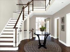 silver fox and rodeo (stair) Benjamin Moore Personal Color Viewer