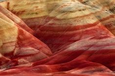 http://www.fubiz.net/2014/09/22/nature-abstract-patterns/