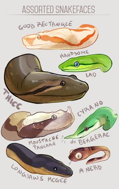 real drawings of reptiles Snake Drawing, Snake Art, Snake Sketch, Desenho New School, Funny Animals, Cute Animals, Art Mignon, Cute Reptiles, Cute Snake