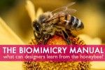 The Biomimicry Manual: What can the Honeybee Teach Designers About Insulation, Elasticity and Flight? | Inhabitat - Sustainable Design Innov...