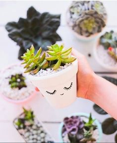 Cheap Crafts To Make and Sell - Succulent Clay Vase - Inexpensive Ideas for DIY Craft Projects You Can Make and Sell On Etsy, at Craft Fairs, Online and in Stores. Quick and Cheap DIY Ideas that Adult(Diy Bedroom For Adults) Cute Crafts, Easy Crafts, Diy And Crafts, Homemade Crafts, Easy Diy, Summer Crafts, Adult Crafts, Crafts For Teens To Make, Crafts To Sell