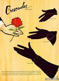 René Gruau illustrated ad for Crescendoe gloves, 1951. #vintage #1950s #ads