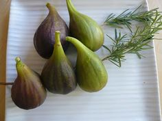 Take ripe figs and place 2-3 of them on a branch of fresh rosemary (dampen the sprig with water before using to prevent burning). Repeat. Grill on a BBQ or over a fire until warmed through. They can be served solo, or with a side of fresh goat cheese