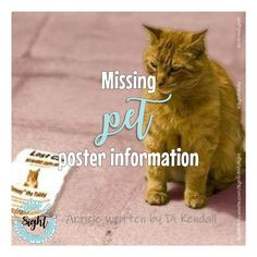 Missing pet poster info Friends List, Information Poster, Bold Fonts, Article Writing, Have A Beautiful Day, How To Make Notes, Your Pet, Pets, How To Take Notes