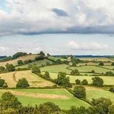 See the most interesting photos taken by Alan Woollard (alan.woollard)   Small Down Knoll as seen from Maes Down, Evercreech, Somerset. #smalldownknoll #maesdown #evercreech #somerset #england #landscape #landscapephotography #photography #photo #somersetcountryside #englishcountryside #beautiful #beautifulview #beautifulsomerset #myphoto #somersetbloke #alanwoollard