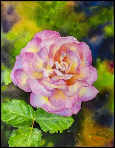 Paintings by Ross Barbera, Watercolor, Acrylic and Digital on Paper - Ross Barbera Painting Flowers, Paintings, Watercolor, Digital, Rose, Paper, Plants, Art, Pen And Wash