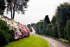 Villa di Delizia, entrata