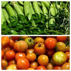 Organic Tomato Abundance and Sweet Peas/Herbs Thriving - Okinawa Organic Harvest Growing Tomatoes, Okinawa, Tripod, Trellis, Planting, Abundance, Harvest, Bamboo, Herbs