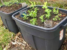 self irrigating planters