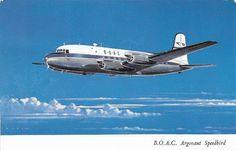 BOAC Canadair C-4 Argonaut speedbird 1949 Postcard