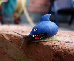 Nieuwe trend: Het verven van slakken om te voorkomen dat ze worden platgestampt | NSMBL.nl