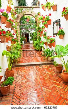 Patio with flowers in Cordoba, Spain - random pot placement - messy and wonderful