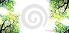 beautiful-white-background-abstract-tree-branches-corners-image-useful-cards-banner-stationery-wallpaper-blog-posts Tree Branches, Colorful Backgrounds, Symbols, Posts, Abstract, Wallpaper, Blog, Cards