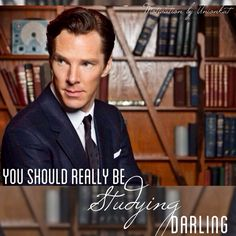 You Really Should Be Studying...Darling