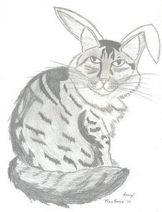 @MizzBassie kotka Cat Custom Pet Portrait by SunnyArts.deviantart.com on @deviantART
