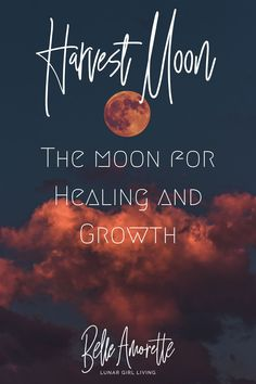 In October Fall has finally arrived! For Moon lovers, the Harvest Moon is a time for healing and growth. It is a time to take inventory of our physical and emotional stockpiles. What needs healing? What growth have you seen this past year? Learn more about the October Harvest Moon and the energy available to help us to prepare for the new beginnings that await + Moon Activities we can try throughout the month! New Moon Rituals, Full Moon Ritual, Full Moon This Month, Full Moon Names, Moon Activities, October Fall, Moon Signs, Harvest Season, Moon Magic